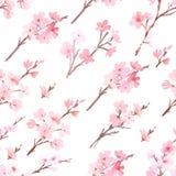 Acuarela con el árbol de la primavera en modelo del flor ilustración del vector