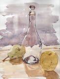 Acuarela de la botella y de la fruta Fotografía de archivo libre de regalías