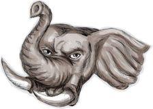 Acuarela de la cabeza del elefante africano Imágenes de archivo libres de regalías