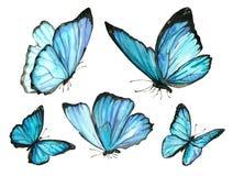 Acuarela de la colección de volar mariposas azules Fotografía de archivo libre de regalías