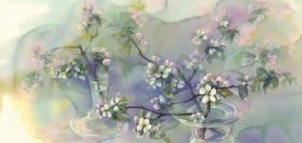 Acuarela de la floración del manzano Imagen de archivo