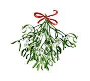 Acuarela de la Navidad con el muérdago, Imágenes de archivo libres de regalías
