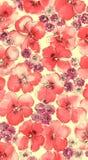 Acuarela del fondo floral rojo Imagenes de archivo