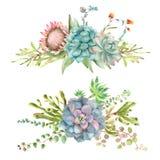 Acuarela del ramo de los Succulents ilustración del vector