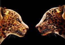 Acuarela del vector del leopardo cartel detallado colorido de la fauna del ejemplo ilustración del vector
