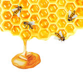 Acuarela Honeycomd y abeja Fotografía de archivo