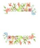 Acuarela Poppy Frame Summer Flower Floral pintada a mano Imágenes de archivo libres de regalías