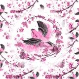 acuarela que dibuja el modelo inconsútil en el tema de la primavera, calor, ejemplo de un pájaro de a gorrión-como la flota de fl ilustración del vector