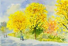 Acuarela que pinta el amarillo original del paisaje, color anaranjado del árbol de oro Fotos de archivo