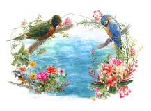 Acuarela que pinta el pájaro hermoso, en el fondo blanco Imágenes de archivo libres de regalías