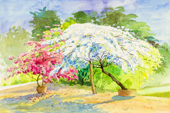 Acuarela que pinta el rosa original del paisaje, color blanco de las flores de papel Fotografía de archivo