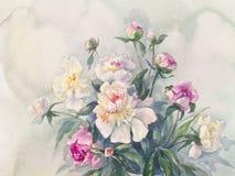 Acuarela rosada blanca del espray de las peonías stock de ilustración
