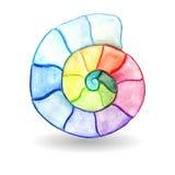 Acuarela Shell del vector Foto de archivo libre de regalías