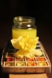 Acuarela y flor artísticas Fotografía de archivo