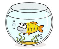 Acuario con los pescados divertidos ilustración del vector