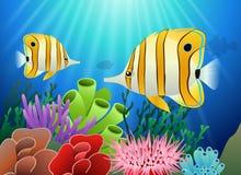Acuario con los pescados y los corales Fotografía de archivo libre de regalías