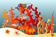 Acuario de los pescados Foto de archivo libre de regalías