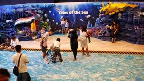 Acuario del mundo del océano de Bangkok de la vida marina almacen de video