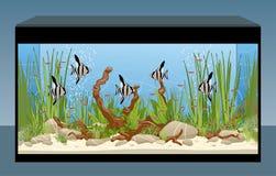 Acuario natural con los pescados y las plantas stock de ilustración