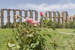 Acueducto de Los Milagros, Mérida, Spanien Lizenzfreie Stockfotografie