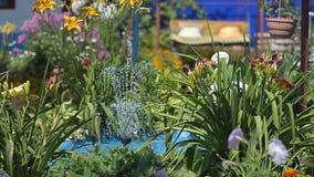 Acumule en jardín, con una fuente con las flores, lugar por un día de fiesta de la familia almacen de video