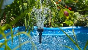 Acumule en jardín, con una fuente con las flores y las plantas almacen de video