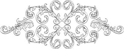 Acunthus ornate flower Stock Images