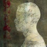 Acupuncture. Head. Photo based illustration Royalty Free Stock Image