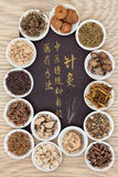Acupuncture Alternative Medicine Royalty Free Stock Image