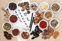 Acupuncture Chinese Medicine. Chinese herb ingredients, acupuncture needles and moxa sticks, with calligraphy on rice paper. Translation describes acupuncture Royalty Free Stock Photography