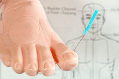 Acupuncture demonstration on model. Acupuncture demonstration on foot model Stock Photos