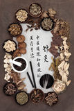 Acupuncture Medicine Royalty Free Stock Image