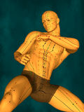 Acupuncture model, 3D illustration royalty free stock images