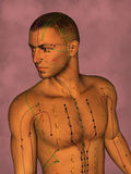Acupuncture model, 3D illustration stock photos