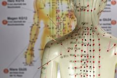Acupuncture model Stock Images
