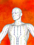 Acupuncture model. Human Body, Acupuncture Model, Acupuncture Points and Meridians, 3D Model, 3D Illustration Stock Image