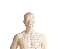 Acupuncture model of human. Isolated on white Stock Photo