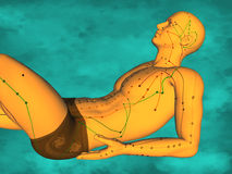 Acupuncture model M-POSE FBHM-402-11, 3D Model Stock Photography