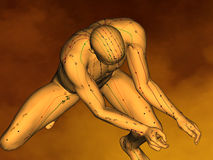 Acupuncture model M-POSE G-11-1.jpg , 3D Model Royalty Free Stock Image