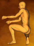 Acupuncture model M-POSE G-11-4.jpg , 3D Model. Human Poses, Meridians and Acupoints,  Human Body,   Acupuncture Background Royalty Free Stock Photo