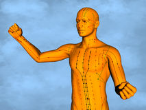 Acupuncture model M-POSE M4ay-24-9, 3D Model. Human Poses, Meridians and Acupoints,  Human Body,   Acupuncture Background Royalty Free Stock Photography