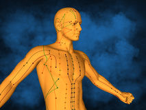 Acupuncture model M-POSE M4ay-06-1, 3D Model. Human Poses, Meridians and Acupoints,  Human Body,   Acupuncture Background Royalty Free Stock Images