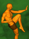 Acupuncture model M-POSE Ma-s-01-06, 3D Model. Human Poses, Meridians and Acupoints,  Human Body,   Acupuncture Background Stock Photos