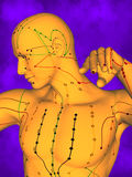 Acupuncture model M-POSE Ma-s-12-16, 3D Model Stock Images