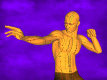 Acupuncture model M-POSE Ma-s-12-1, 3D Model Royalty Free Stock Photos