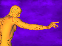 Acupuncture model M-POSE Ma-s-12-3, 3D Model Stock Photography