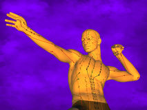 Acupuncture model M-POSE Ma-s-12-2, 3D Model Royalty Free Stock Photos