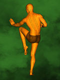 Acupuncture model M-POSE Ma-s-01-03, 3D Model. Human Poses, Meridians and Acupoints,  Human Body,   Acupuncture Background, Green  Background Royalty Free Stock Image