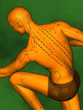 Acupuncture model M-POSE Ma-s-01-09, 3D Model. Human Poses, Meridians and Acupoints,  Human Body,   Acupuncture Background, Green  Background Royalty Free Stock Photos