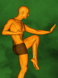 Acupuncture model M-POSE Ma-s-01-04, 3D Model. Human Poses, Meridians and Acupoints,  Human Body,   Acupuncture Background, Green  Background Royalty Free Stock Images